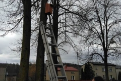 Budki lęgowe dla ptaków