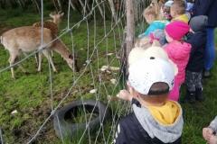 Obchody Dnia Dziecka w przedszkolu